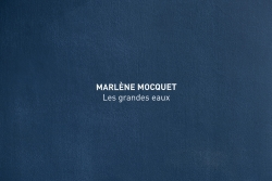 marlene-mocquet-galerie-laurent-godin-01-5013e869cf3fd3ee3276ef9e0313d94d