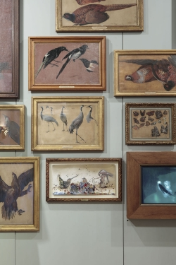 mocquet-musee-chasse-nature-2017-10-c056d789769c5933c125769290bffaac